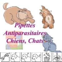 Pipettes antiparasitaires