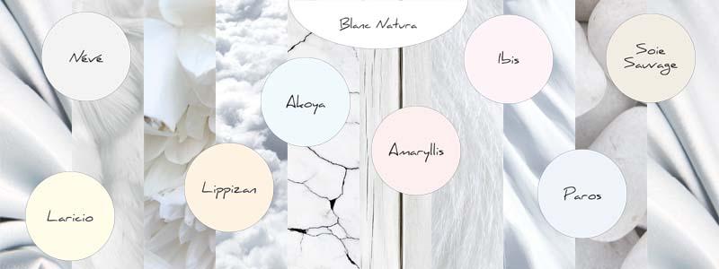 peinture int rieur satin plus tassili blanc pur ou blanc. Black Bedroom Furniture Sets. Home Design Ideas