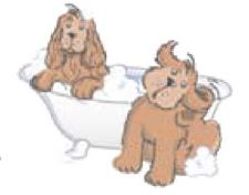 Shampooing antiparasitaire naturel Chien/Chiot AniBioLys