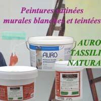 Peintures maison naturelles murales mates et satin es auro for Peinture acrylique murale satinee